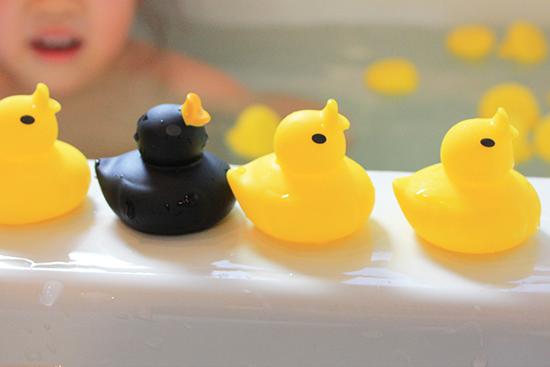 あひる風呂ミニ,12匹のあひる