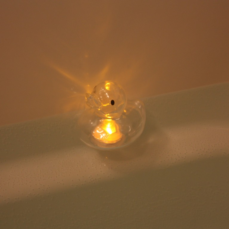 CANDLE DUCK